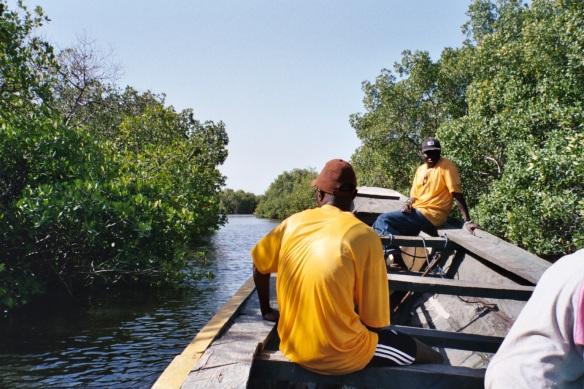 Mangroves Isle de Karon